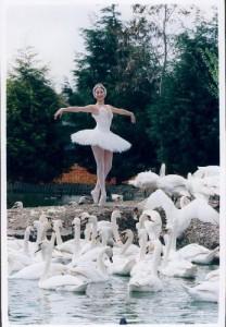 myfile myfile swan lake
